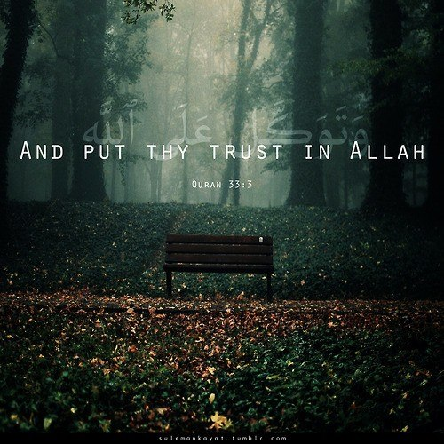 and put the trust in allah